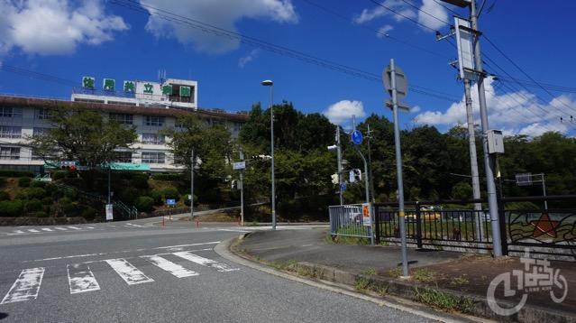 Inachiku coase  4  78