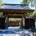寺社仏閣or建築好きなら見ておくべき。光福寺は大イトザクラだけじゃなく本堂もすごかった。