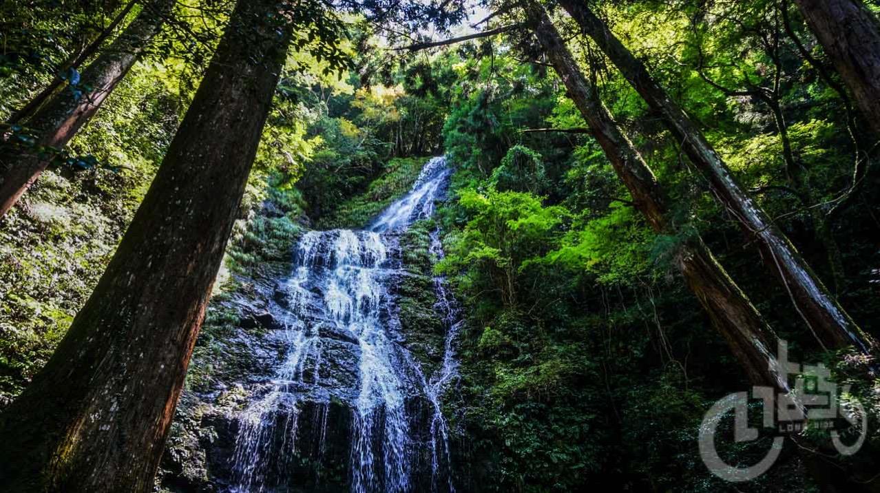 あの大河ドラマにも使われた!飛龍の滝は佐用町に来たならぜひ訪れるべき場所です。